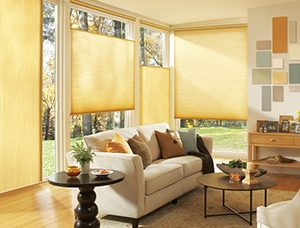 Window Treatment Bronx NY