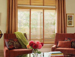 Window Blinds Westchester County