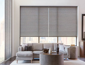 Blinds & Shades Bronx